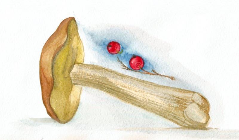 Akwarela obrazu pojedyncza pieczarka i czerwony rodzynek ilustracja wektor