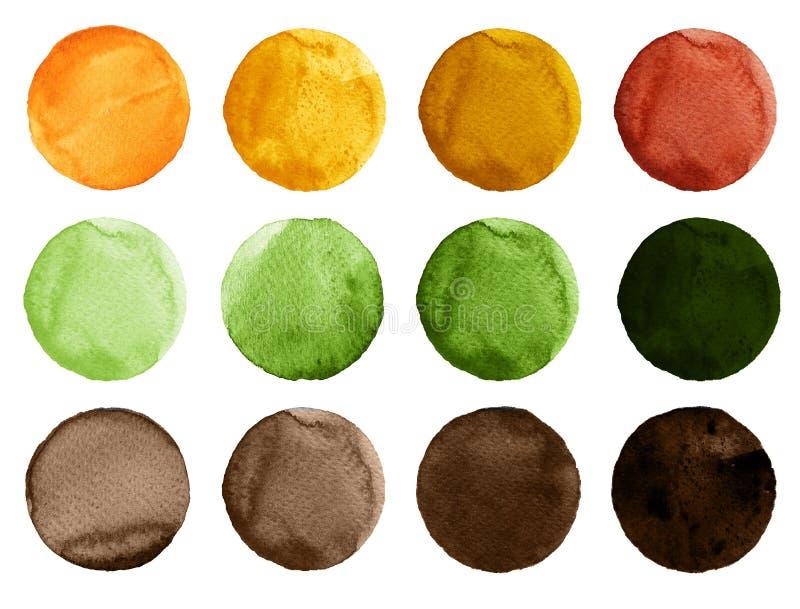 Akwarela okręgi w cieniach zieleń, kolor żółty i brąz, barwią odosobnionego na białym tle royalty ilustracja