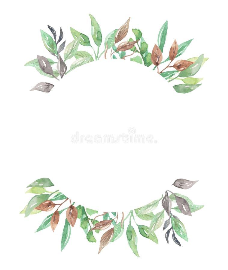 Akwarela okręgu liści ulistnienia zieleni ramy wiosny Ślubny lato royalty ilustracja