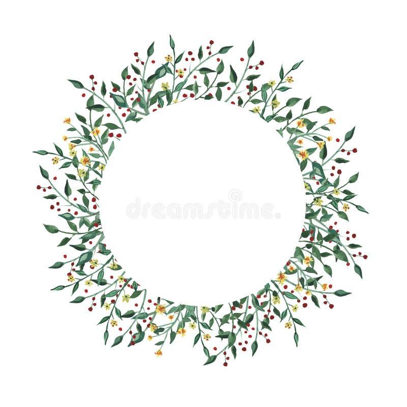 Akwarela okręgu rama z wildflower, ziele, liść kolekcja ogród, dziki ulistnienie, kwiaty, rozgałęzia się ilustracja wektor