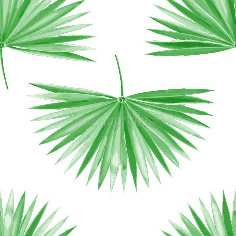 Akwarela palmowego liścia zieleni wektor ilustracja wektor