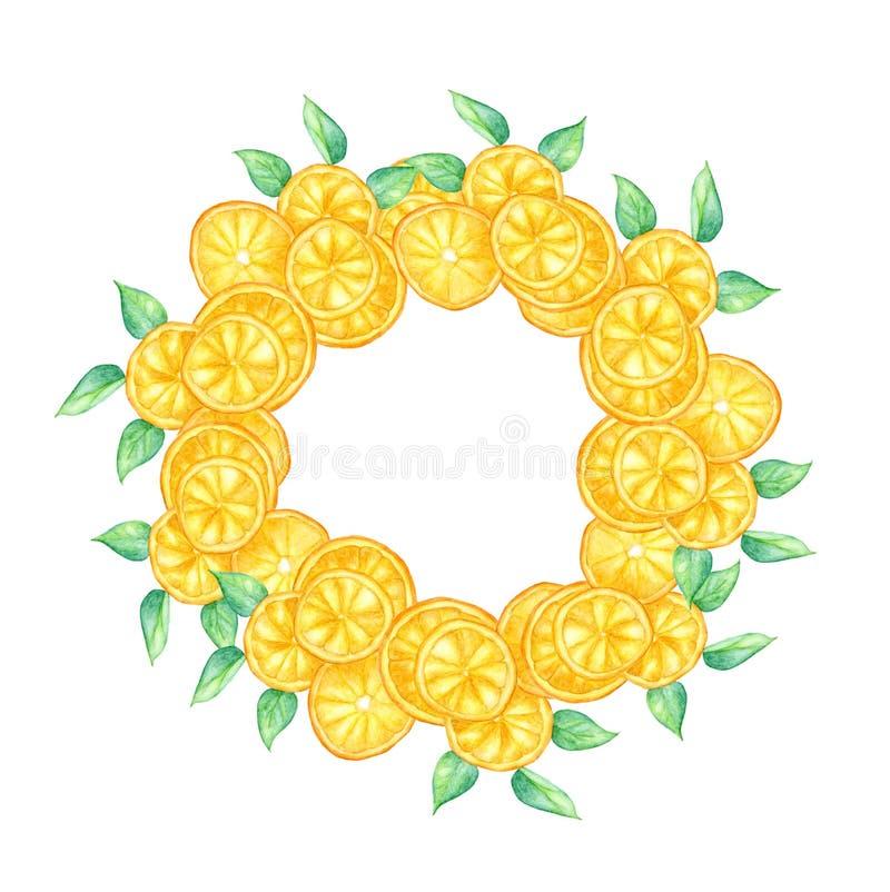 Akwarela plasterek pomarańczowa owoc i zieleń opuszcza wianek royalty ilustracja