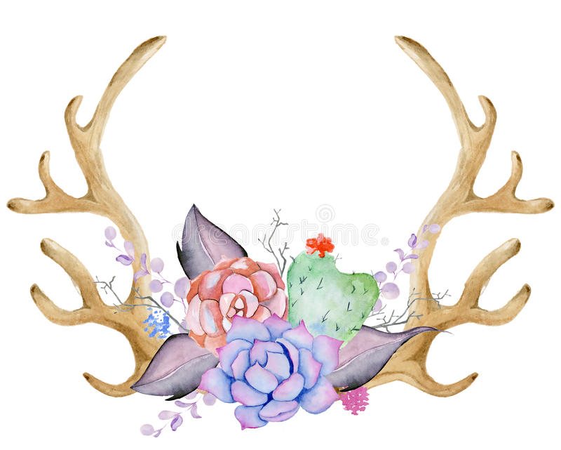 Akwarela poroże z sukulentem, kaktusem i liśćmi, royalty ilustracja