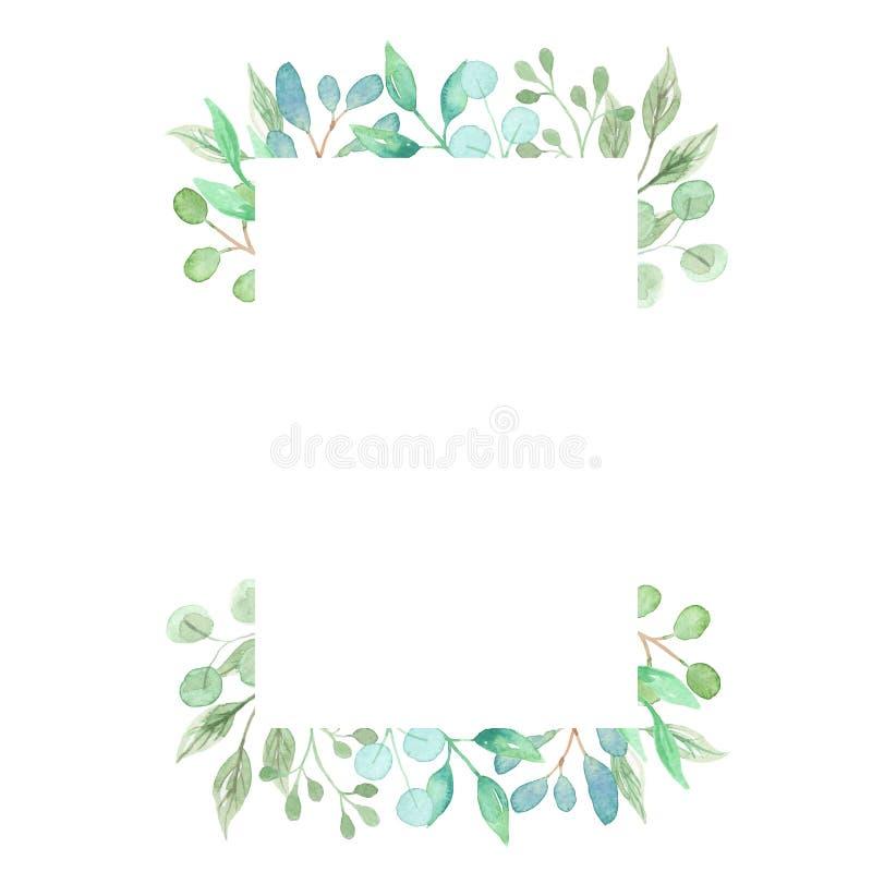 Akwarela prostokąta zieleni wianku rama Opuszcza Ślubnej wiosny lata girlandy oliwki ilustracji