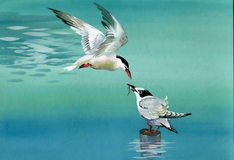 Akwarela ptaki ilustracji