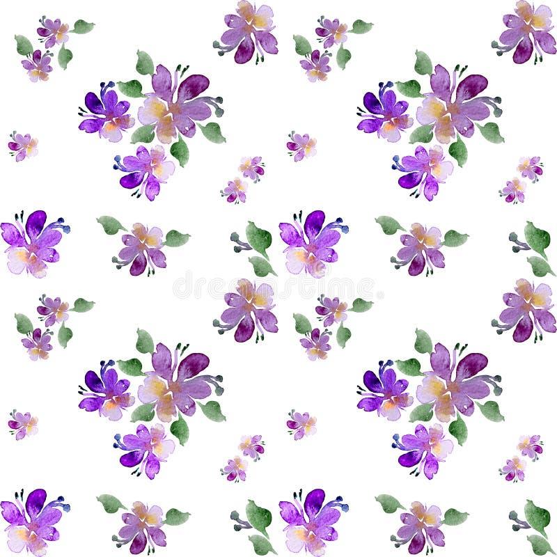Akwarela, purpura kwitnie na białym tle royalty ilustracja