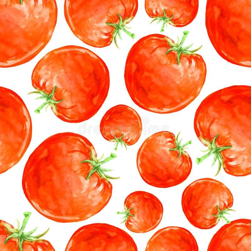 Akwarela ręka rysujący bezszwowy wzór z czerwonymi dojrzałymi pomidorami royalty ilustracja