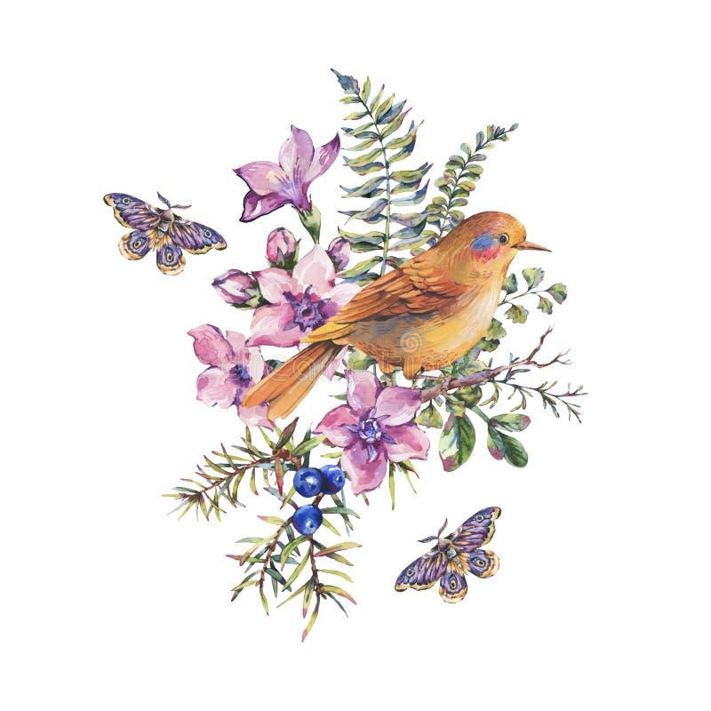 Akwarela rocznika kwiecista lasowa kartka z pozdrowieniami z ptakiem, jagody, ćma, paproć, menchia kwitnie ilustracji