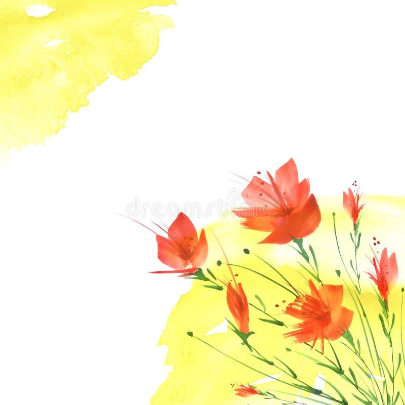 Akwarela rocznika obrazek, granica botaniczny wz?r, czerwony maczek, wzrasta?, leluja, dzicy kwiaty, trawa, ro?liny, li?cie Na is royalty ilustracja