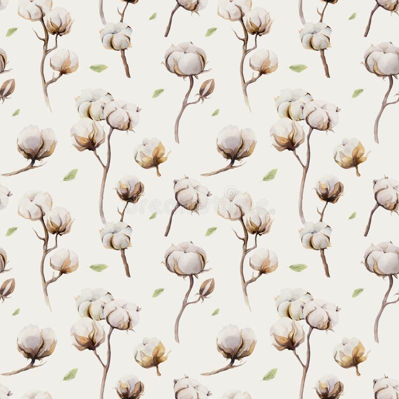 Akwarela rocznika tło z gałązkami i bawełną kwitnie boho ilustracji