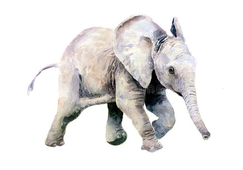 Akwarela rysunek dziecko słoń troszkę ilustracja wektor
