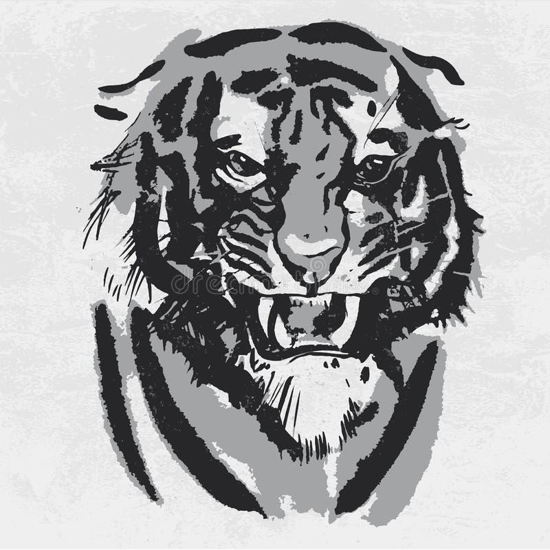Akwarela rysunek gniewny przyglądający tygrys Zwierzęcy portret na białym tle ilustracji