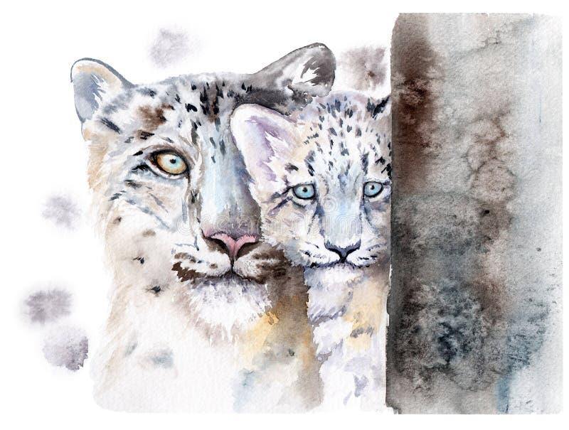 Akwarela rysunek zwierzęta - śnieżny lampart z dzieckiem obrazy royalty free