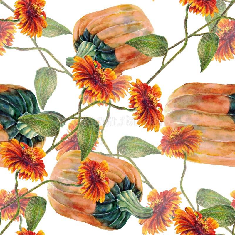 Akwarela słoneczniki z banią Na biały tle bezszwowy wzór ilustracja wektor