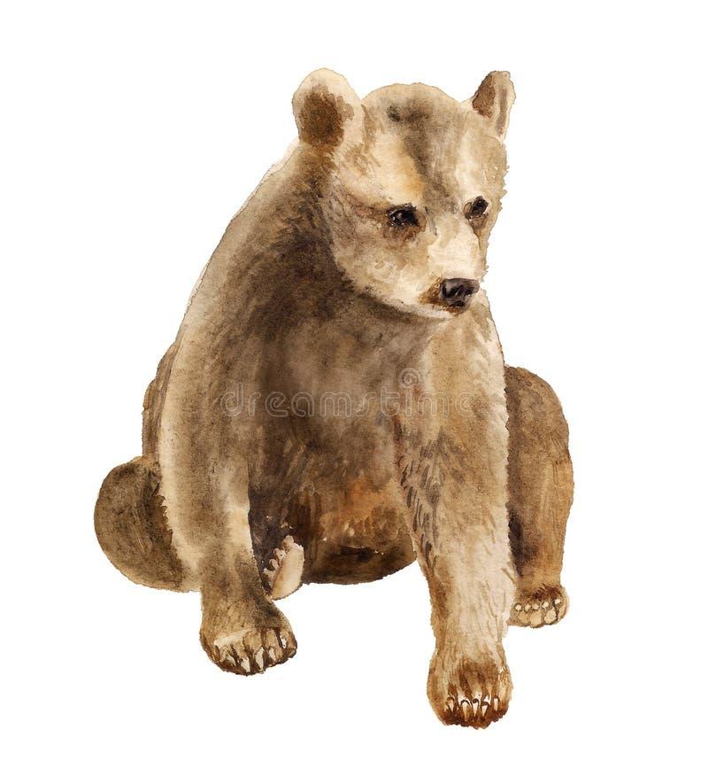 Akwarela siedzi niedźwiadkowego lisiątka royalty ilustracja