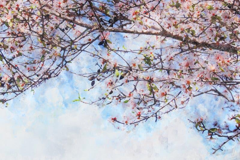 akwarela stylowy i abstrakcjonistyczny wizerunek czereśniowy drzewo kwitnie royalty ilustracja