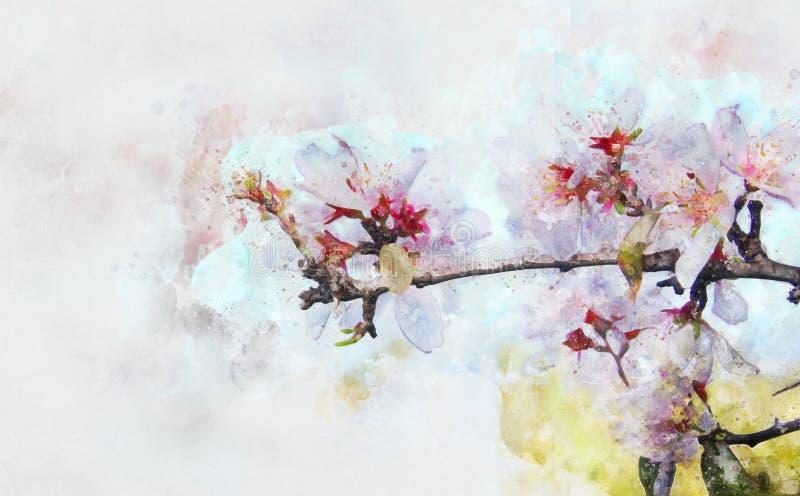 akwarela stylowy i abstrakcjonistyczny wizerunek czereśniowy drzewo kwitnie ilustracji