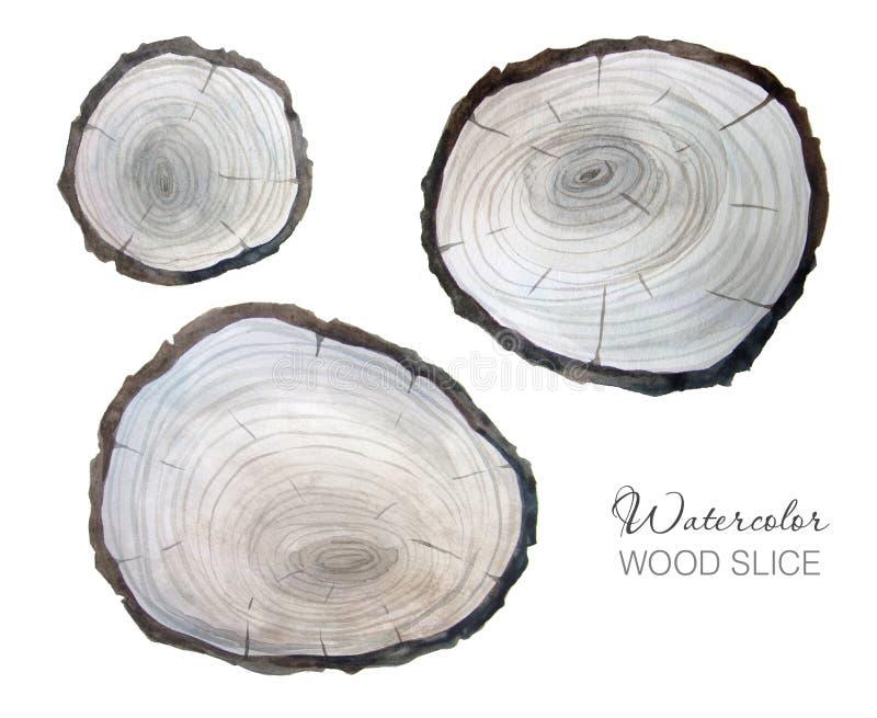 Akwarela szarzy drewniani plasterki ustawiający ilustracji