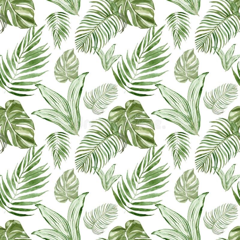 Akwarela tropikalnych liści botaniczny bezszwowy wzór z roślinami Piękny zielony powtórka druk royalty ilustracja