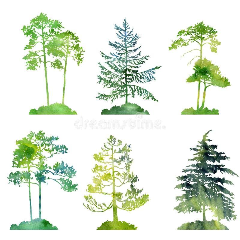 Akwarela ustawiająca conifer drzewa ilustracja wektor