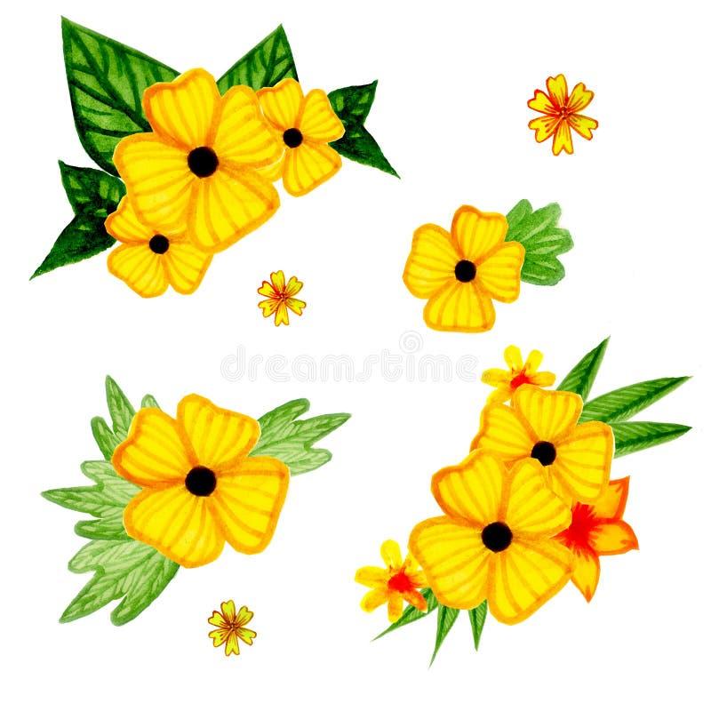 Akwarela ustawiająca kolor żółty kwitnie z zieleniami royalty ilustracja