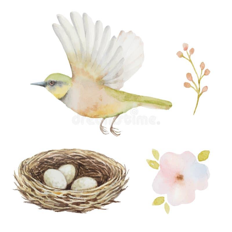 Akwarela ustawiająca ptak i gniazdeczko z jajkami ilustracja wektor
