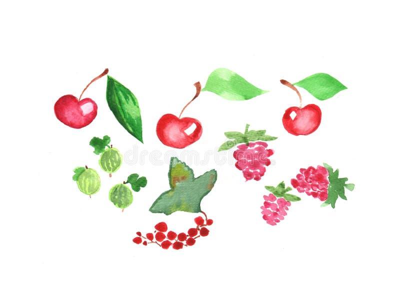 Akwarela ustawiająca ręka malujący elementy świeże owoce Malinka, wiśnie i czerwoni rodzynki, ilustracji