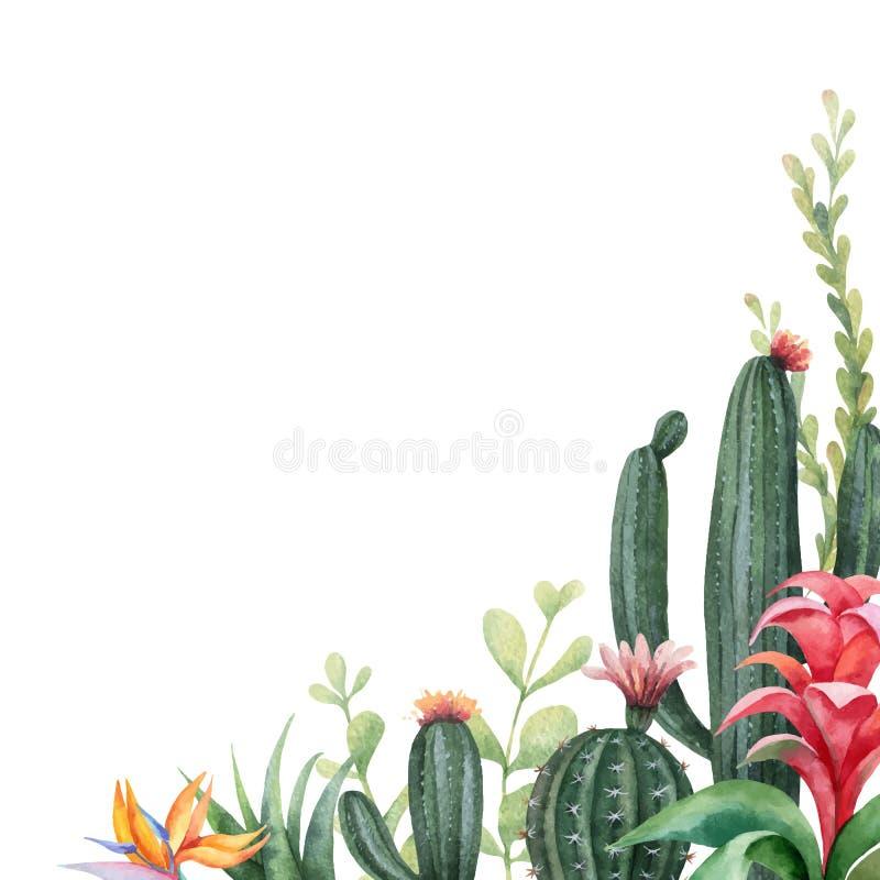 Akwarela wektorowego sztandaru tropikalni kwiaty i kaktusy odizolowywający na białym tle ilustracji