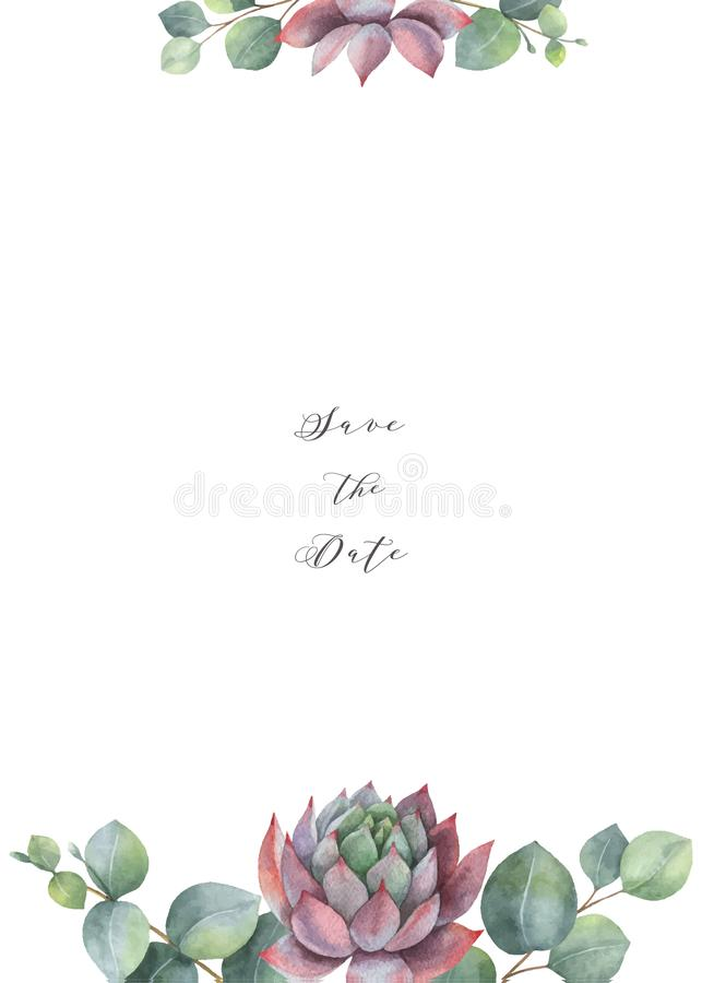 Akwarela wektoru karty szablonu projekt z eukaliptusów sukulentami i liśćmi royalty ilustracja