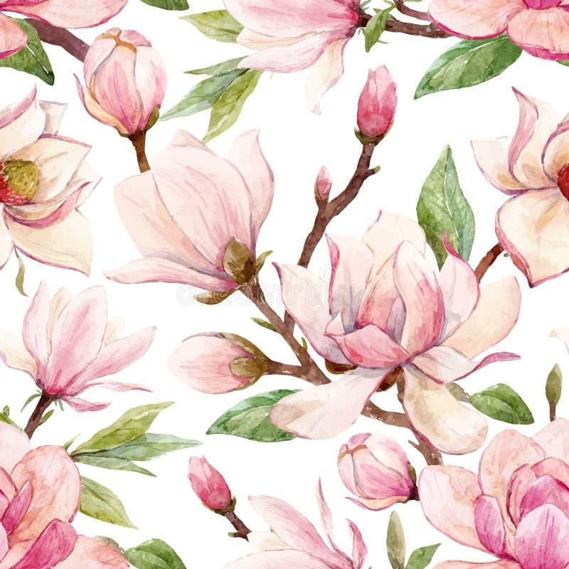 Akwarela wektoru magnoliowy kwiecisty wzór ilustracji