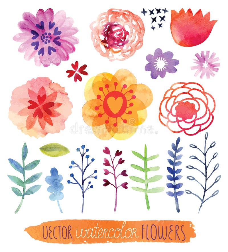 Akwarela wektoru set ładne kwiaty fotografia royalty free