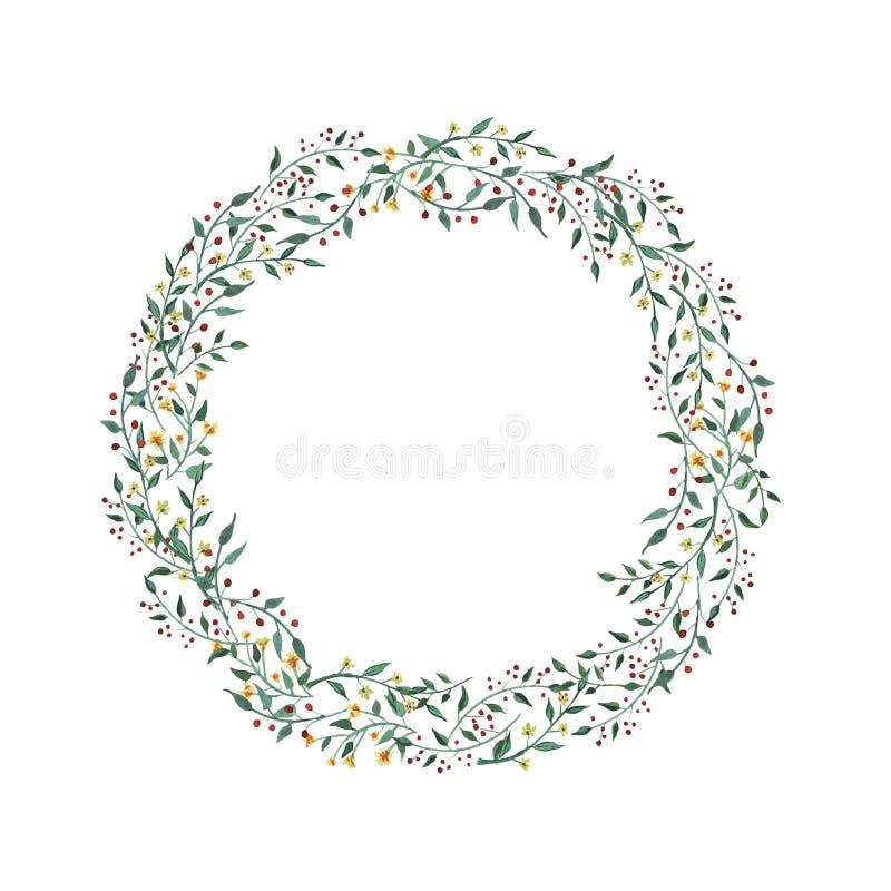 Akwarela wianek z wildflower, ziele, liść kolekcja ogród, dziki ulistnienie, kwiaty, rozgałęzia się ilustracji