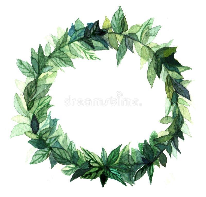 Akwarela wianku okręgu rama pikantność z zielonymi kwiecistymi gałąź na białym tle ilustracji
