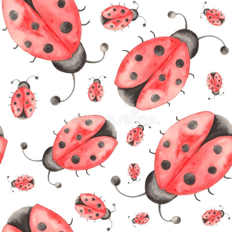 Akwarela wzór insekty, biedronki, pluskwy, ścigi z liśćmi na białym tle ilustracji