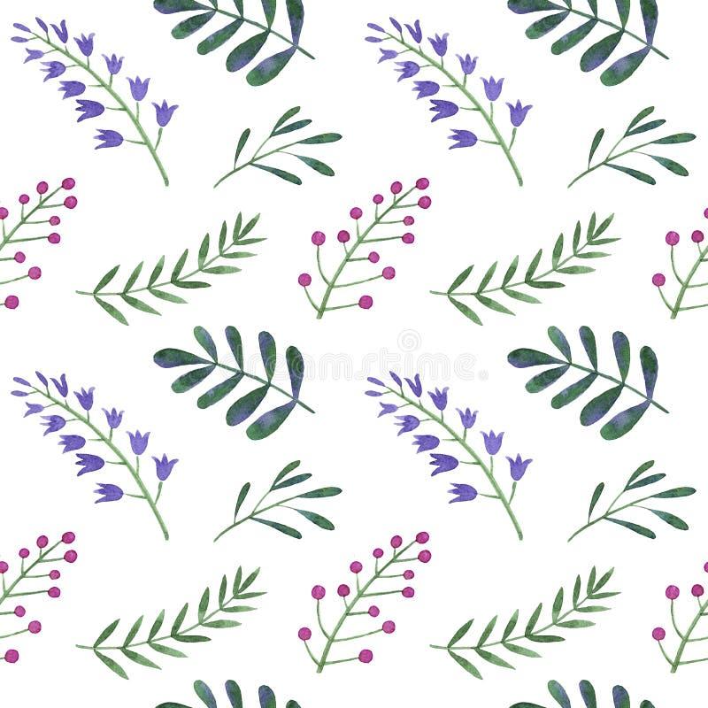 Akwarela wzór kwiaty, jagody royalty ilustracja
