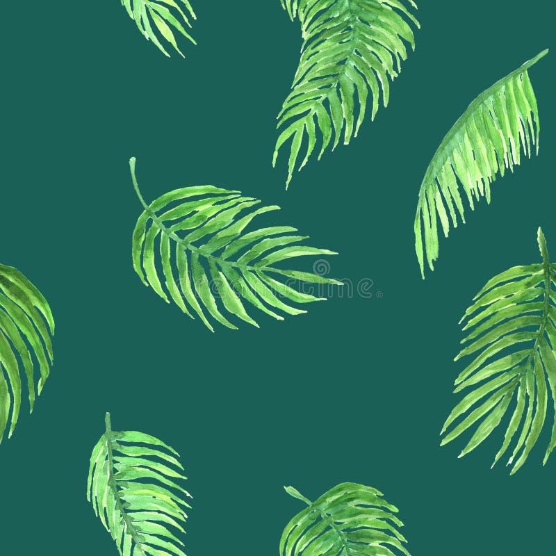 Akwarela wzór palma obraz royalty free