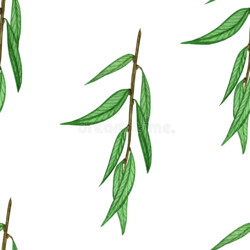 Akwarela wzór z liśćmi ilustracji