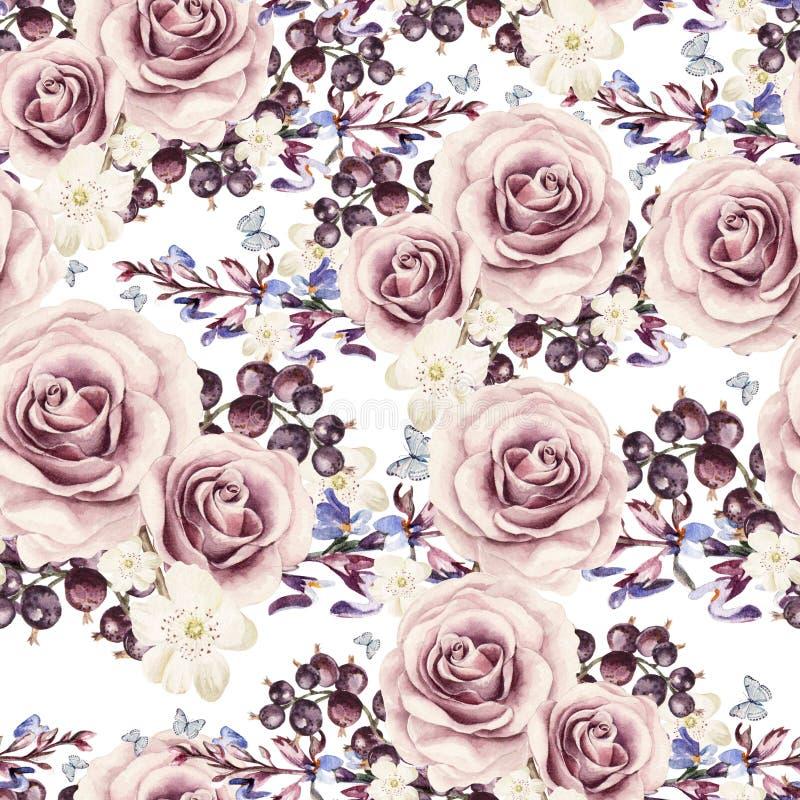Akwarela wzór z różami i jagodami, rodzynki ilustracja wektor