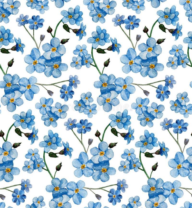 Akwarela zapomina ja nots wzór Błękit kwitnie tło ilustracji