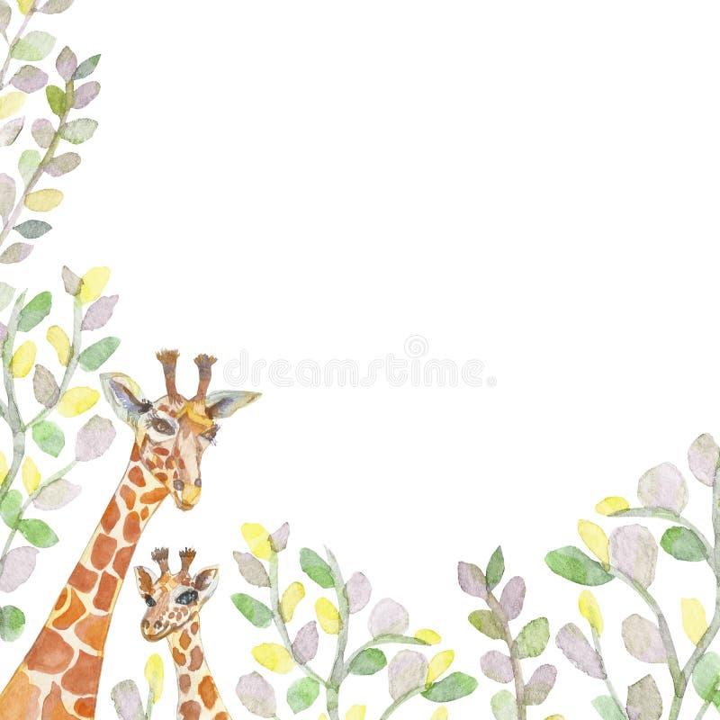 Akwareli żyrafy w eukaliptusów liściach, malujących z muśnięciem, handmade Matka i dziecko Malowniczy skład dla kart, m royalty ilustracja