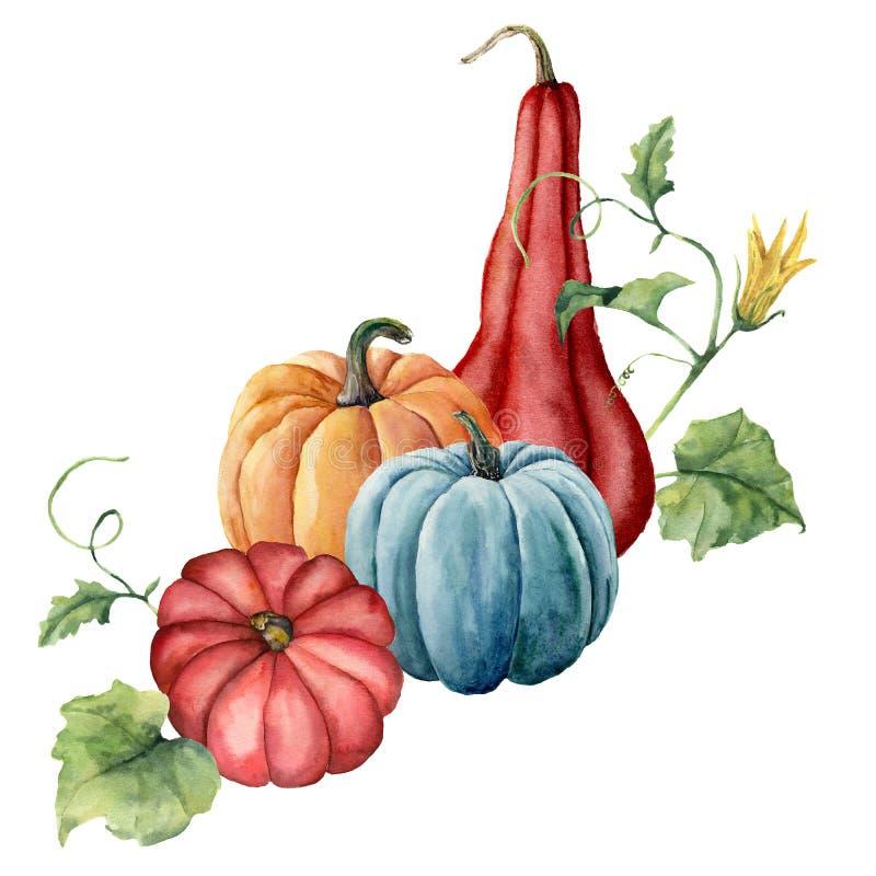 Akwareli bani skład Wręcza malować czerwieni, błękita i pomarańcze banie z liśćmi odizolowywającymi na białym tle, ilustracji