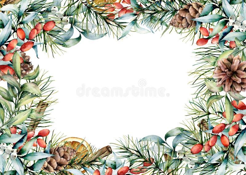 Akwareli Bożenarodzeniowa kwiecista karta z pikantność Ręka malujący jedlinowy drzewo z rożkami, eukaliptusów liśćmi i gałąź, jag ilustracji