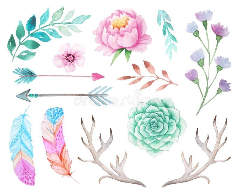 Akwareli boho ustawiający kwiaty i liście ilustracji