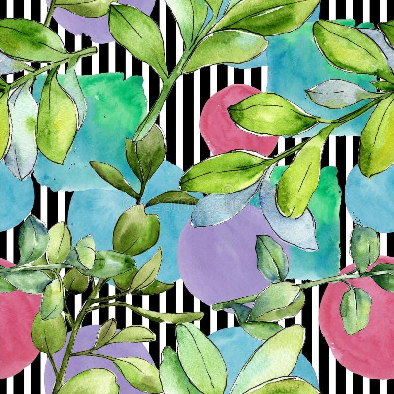 Akwareli boxwood zieleni liść Liść rośliny ogródu botanicznego kwiecisty ulistnienie Bezszwowy tło wzór ilustracja wektor