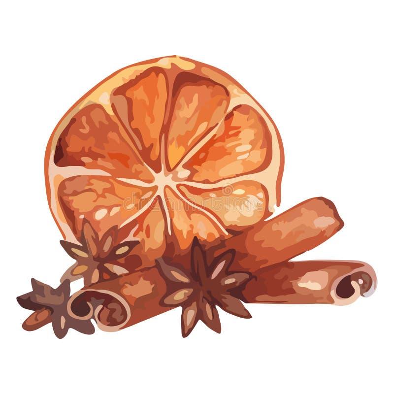 Akwareli cytryny cytrusa owoc anyżowy cynamonowy życie wciąż odizolowywał wektor ilustracji