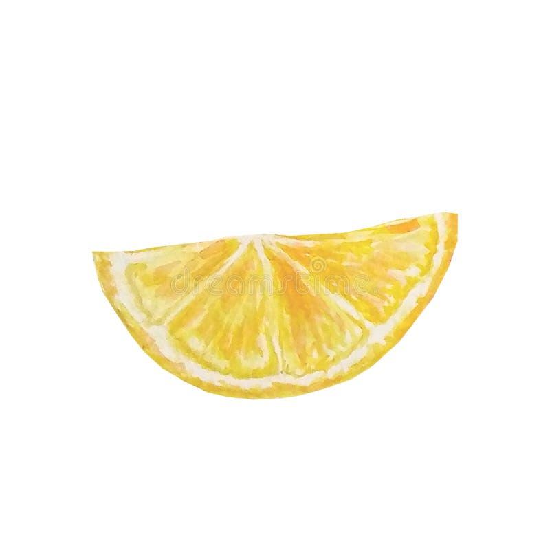 Akwareli cytryny soczysty plasterek ilustracja wektor