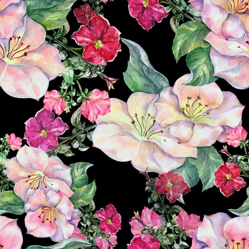 Akwareli czerwona petunia z wiosna kwiatami Bezszwowy wzór na czarnym tle ilustracja wektor