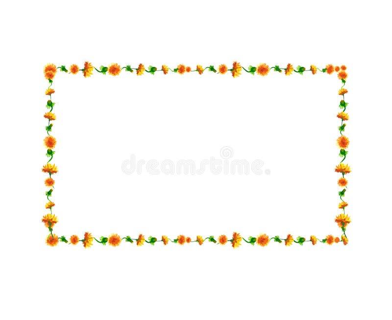 Akwareli dandelion kwitnie, okwitnięcia prostokątna rama odizolowywa royalty ilustracja