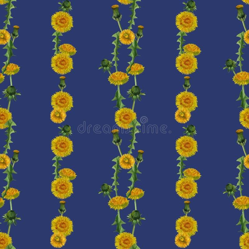 Akwareli dandelions wildflowers tekstury bezszwowy wzór ilustracja wektor