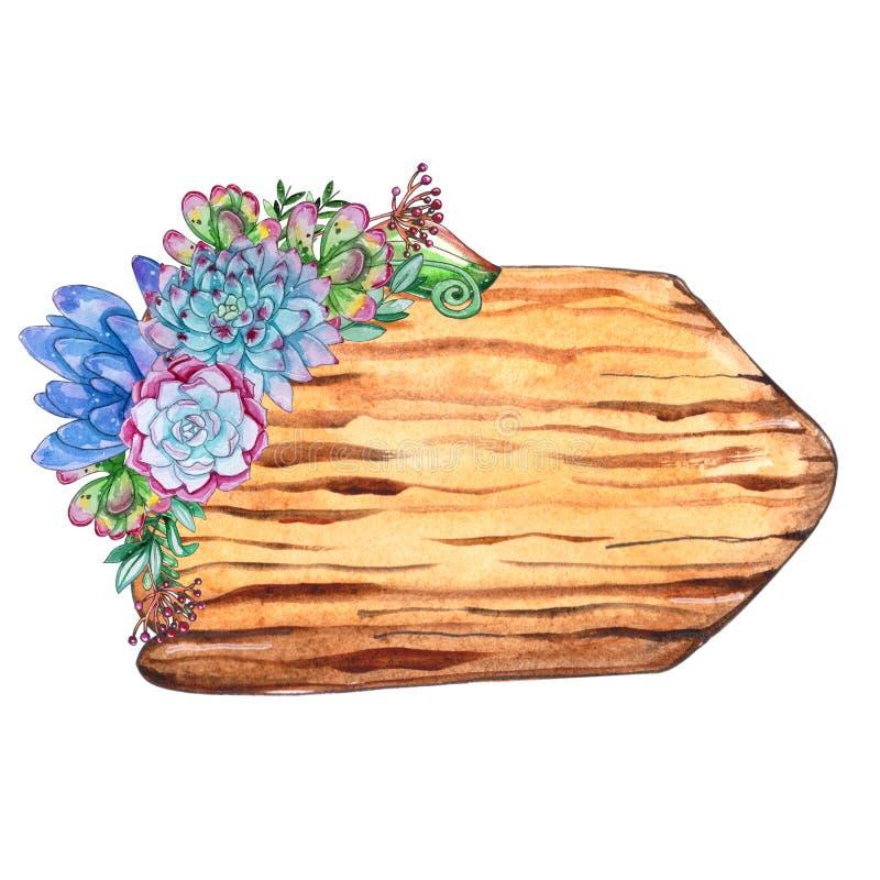 Akwareli drzewa plasterki z tłustoszowatymi roślinami ilustracja wektor